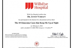 2021/02, Glaukom-Update: The 10 Glaucoma Cases that Keep Me Up at Night (Wills Eye Hospital, Online)